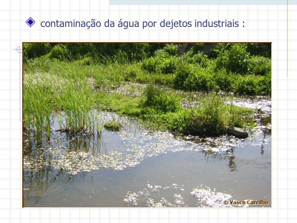 contaminação da água por dejetos industriais :