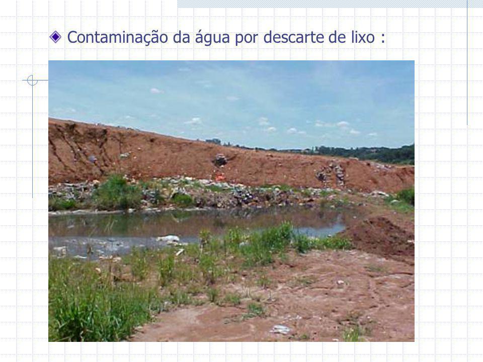 Contaminação da água por descarte de lixo :