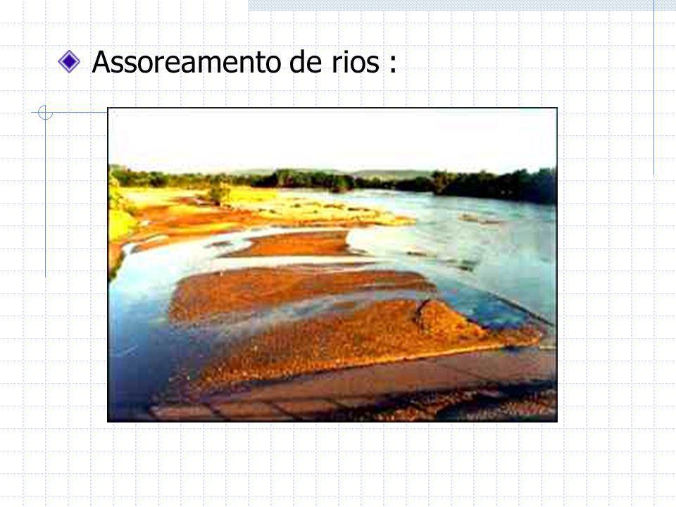 Assoreamento de rios :