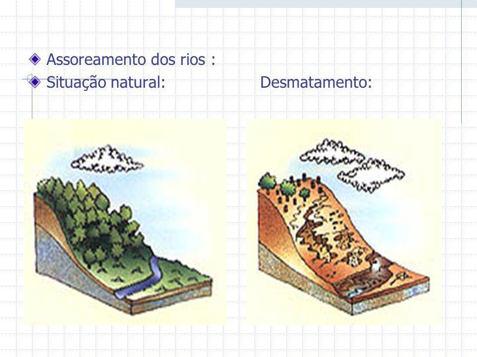 Assoreamento dos rios : Situação natural: Desmatamento: