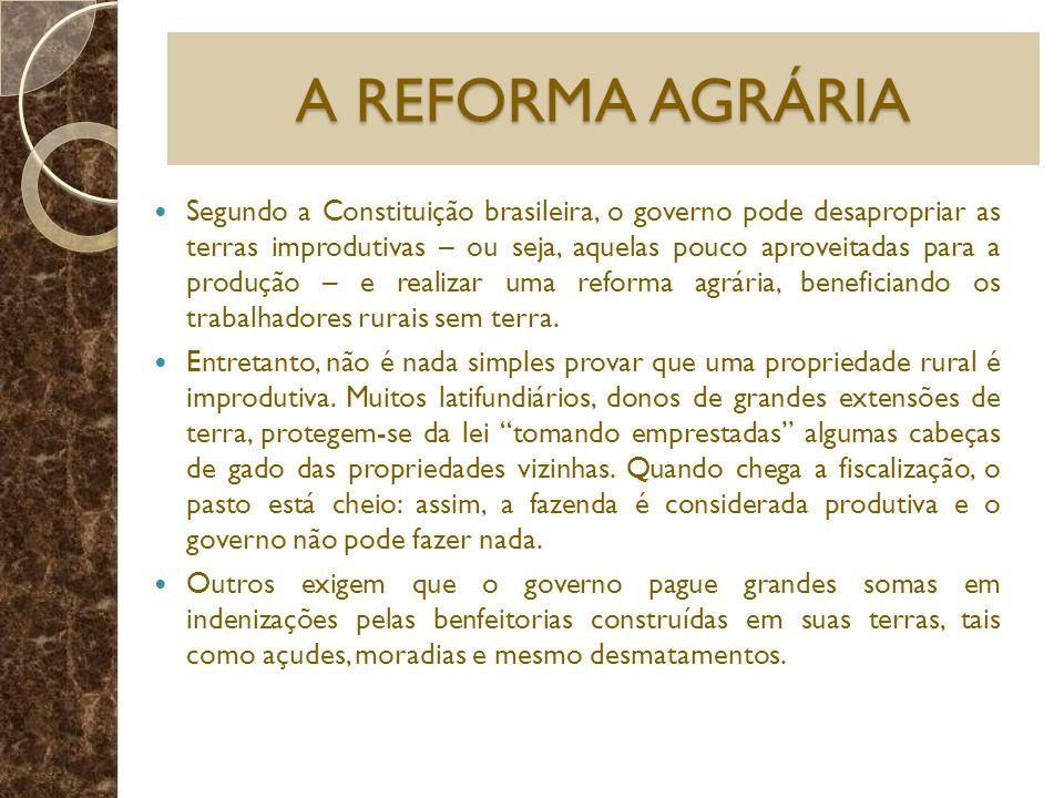 A REFORMA AGRÁRIA Segundo a Constituição brasileira, o governo pode desapropriar as terras improdutivas – ou seja, aquelas pouco aproveitadas para a p