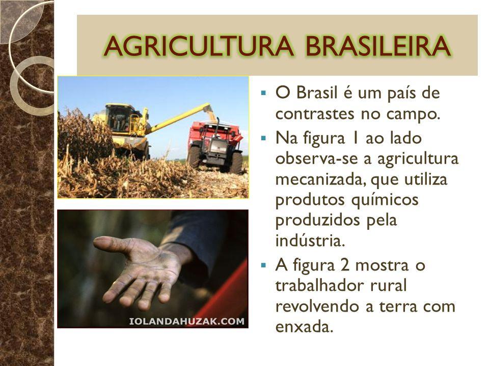 O Brasil é um país de contrastes no campo. Na figura 1 ao lado observa-se a agricultura mecanizada, que utiliza produtos químicos produzidos pela indú
