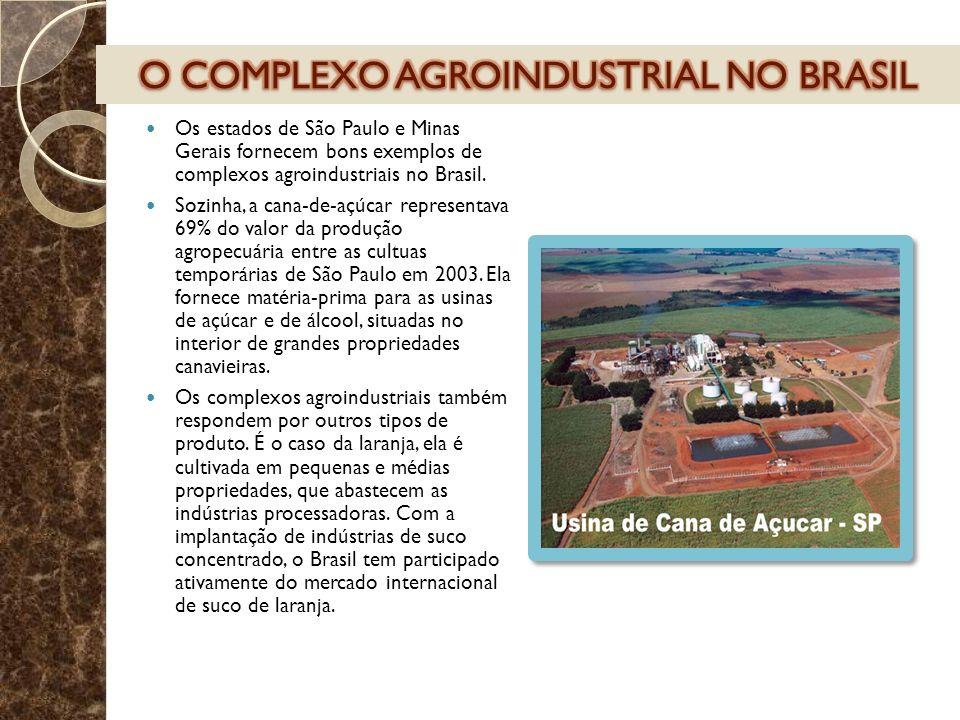 Os estados de São Paulo e Minas Gerais fornecem bons exemplos de complexos agroindustriais no Brasil. Sozinha, a cana-de-açúcar representava 69% do va