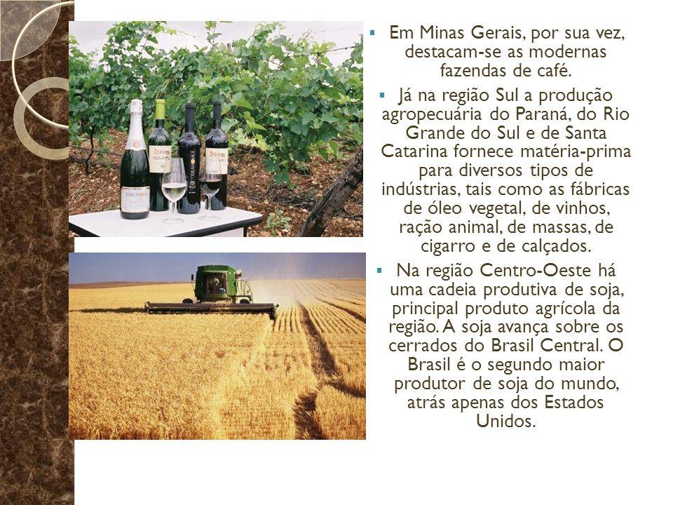 Em Minas Gerais, por sua vez, destacam-se as modernas fazendas de café. Já na região Sul a produção agropecuária do Paraná, do Rio Grande do Sul e de