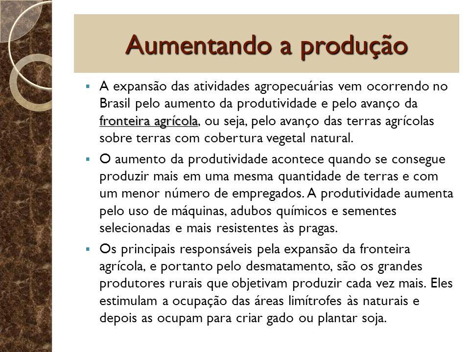 Aumentando a produção fronteira agrícola A expansão das atividades agropecuárias vem ocorrendo no Brasil pelo aumento da produtividade e pelo avanço d