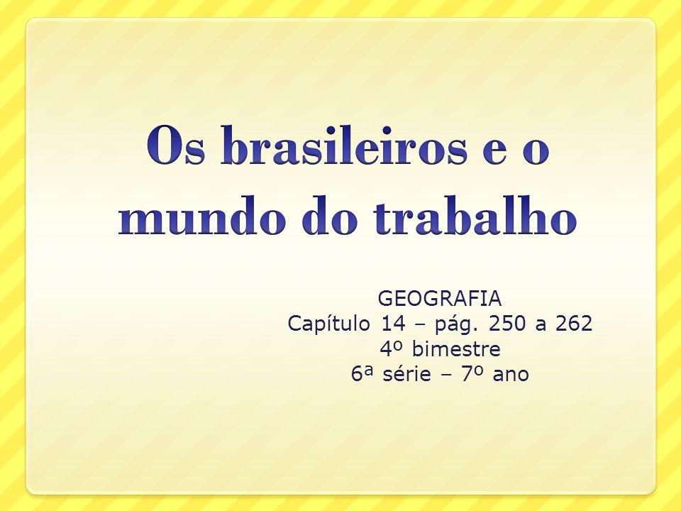 O mercado de trabalho no Brasil Participam do mercado de trabalho brasileiro cerca de 86 milhões de pessoas, praticamente a metade da população total do país, estimada em cerca de 172 milhões, segundo dados do IBGE de 2003.