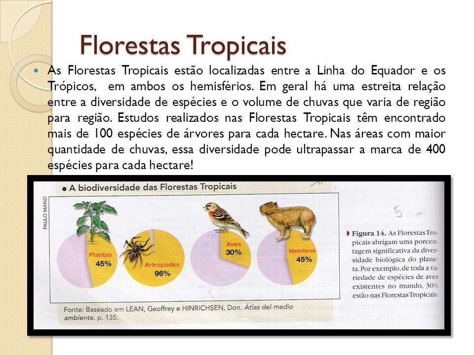 Florestas Tropicais As Florestas Tropicais estão localizadas entre a Linha do Equador e os Trópicos, em ambos os hemisférios. Em geral há uma estreita