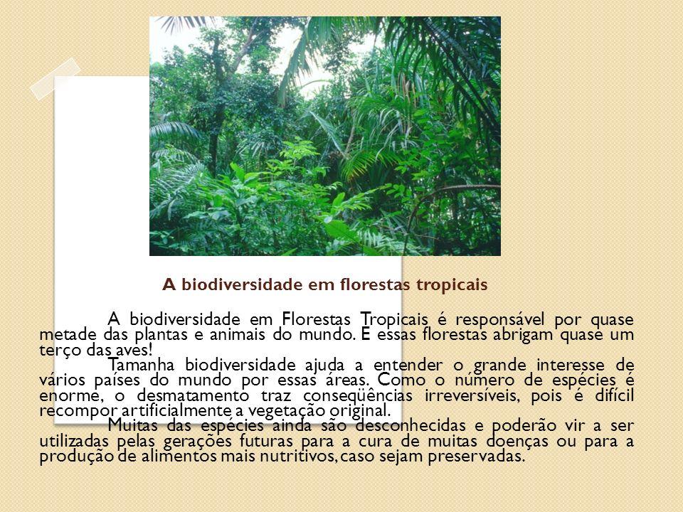 A biodiversidade em florestas tropicais A biodiversidade em Florestas Tropicais é responsável por quase metade das plantas e animais do mundo. E essas