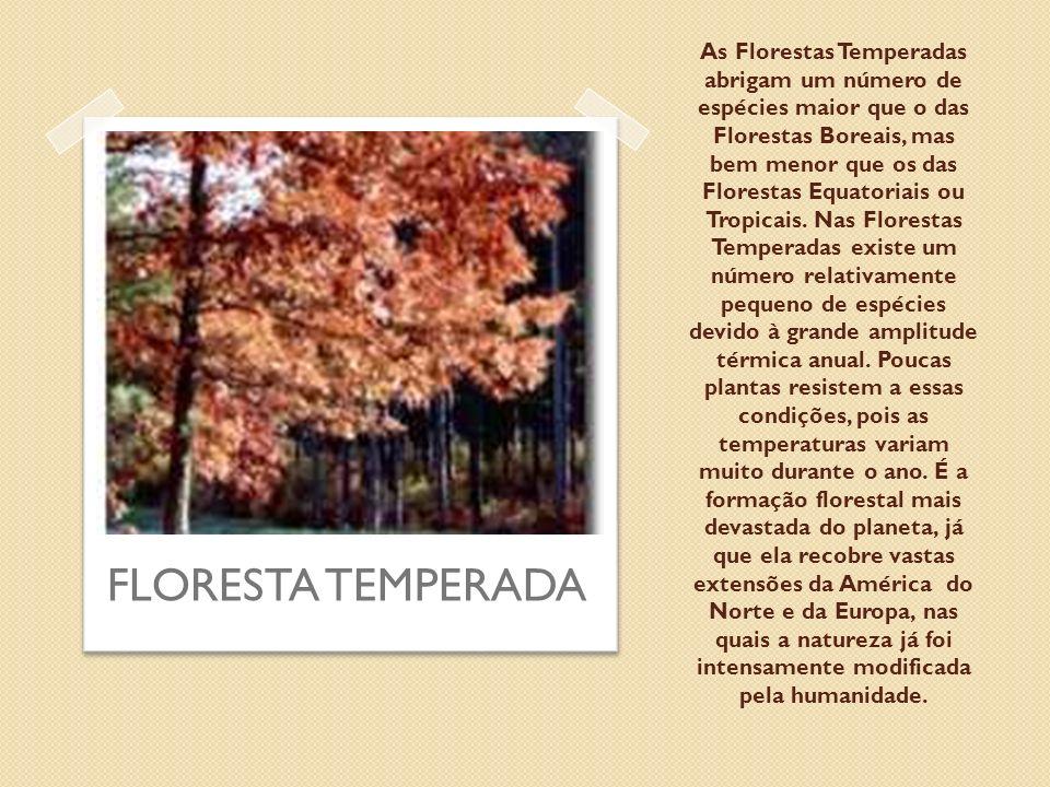 As Florestas Temperadas abrigam um número de espécies maior que o das Florestas Boreais, mas bem menor que os das Florestas Equatoriais ou Tropicais.