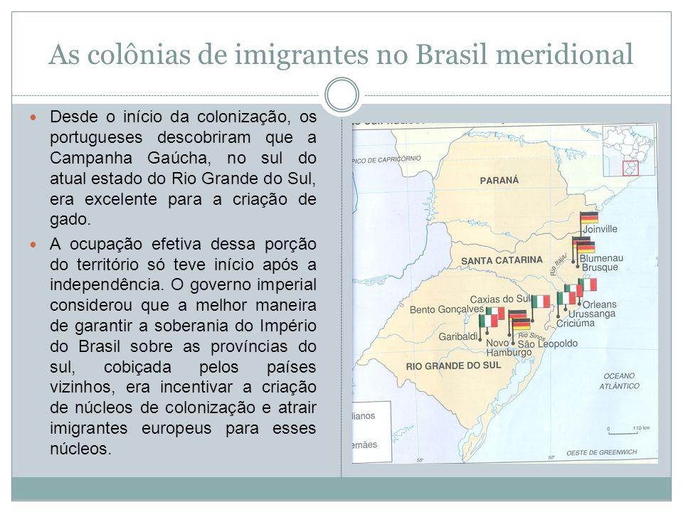 As colônias de imigrantes no Brasil meridional Desde o início da colonização, os portugueses descobriram que a Campanha Gaúcha, no sul do atual estado