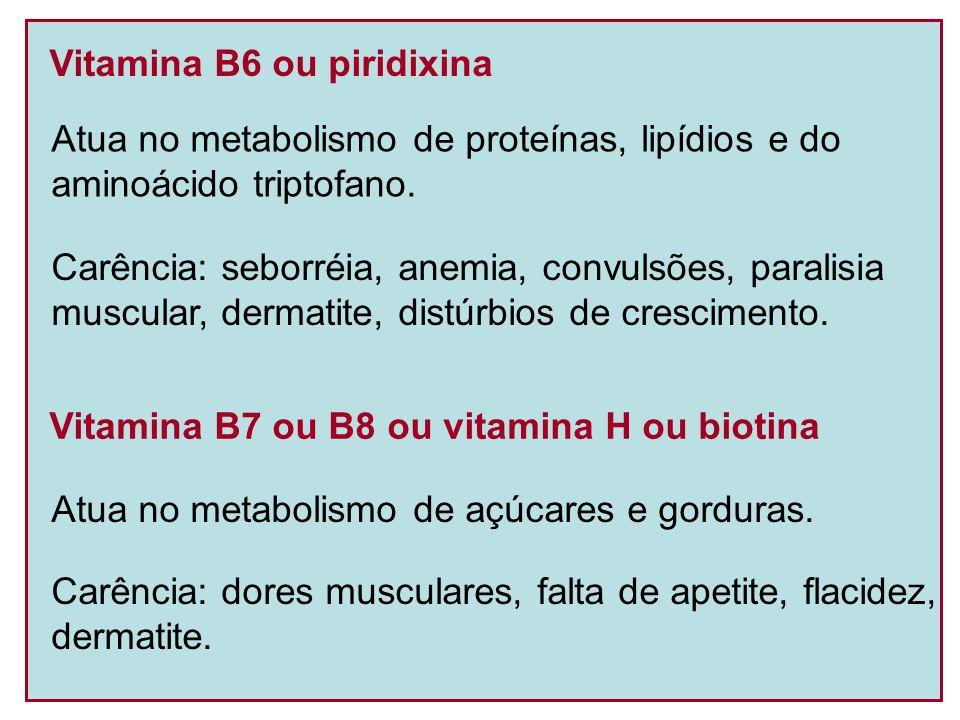 Vitamina B6 ou piridixina Atua no metabolismo de proteínas, lipídios e do aminoácido triptofano. Carência: seborréia, anemia, convulsões, paralisia mu