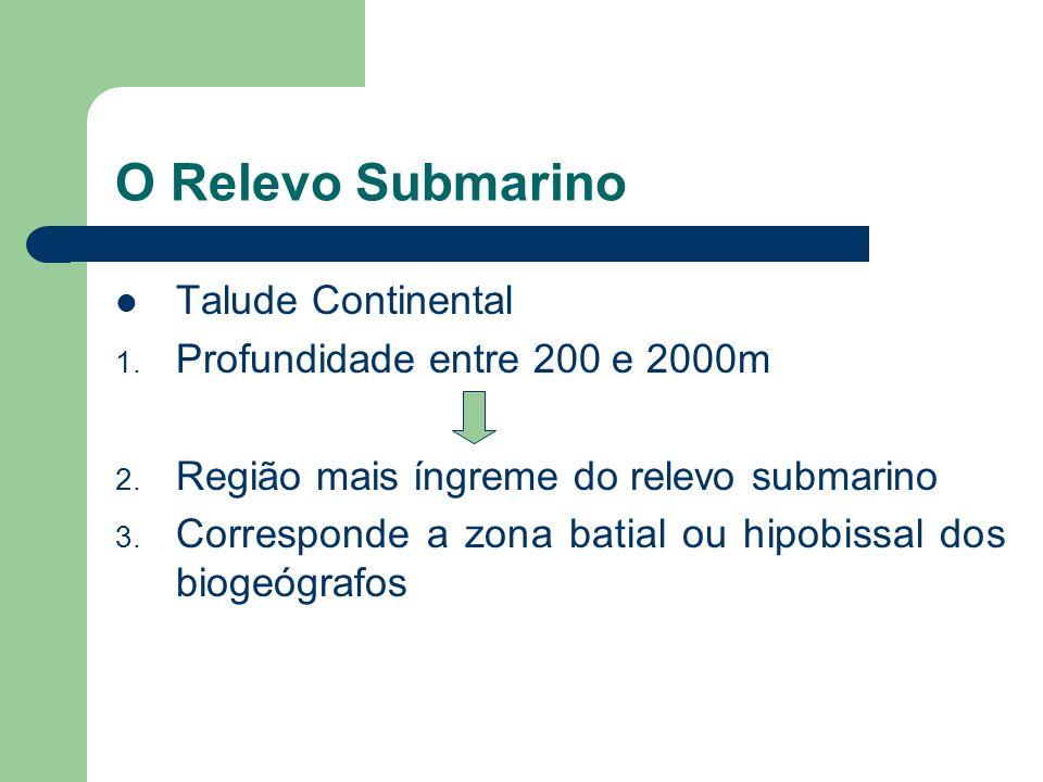 O Relevo Submarino 4. Local de concentração de cardumes 5. Por ter pequena profundidade em média, a luz solar consegue penetrar totalmente, favorecend