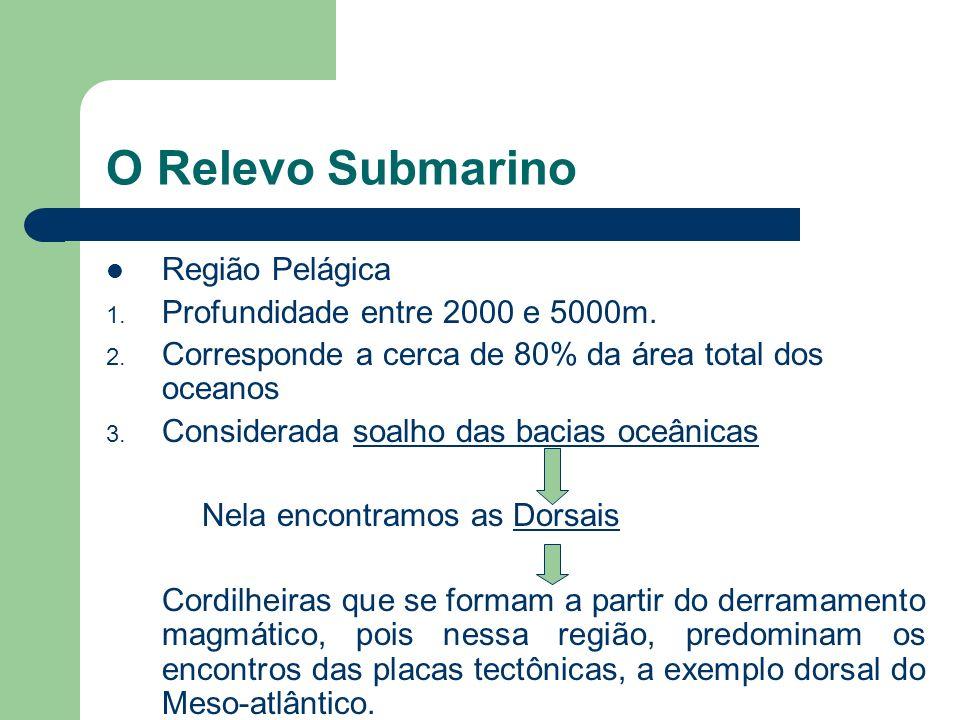 O Relevo Submarino Talude Continental 1. Profundidade entre 200 e 2000m 2. Região mais íngreme do relevo submarino 3. Corresponde a zona batial ou hip