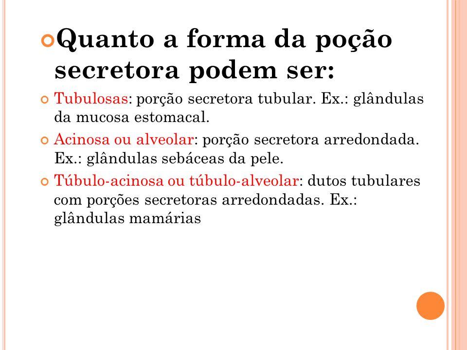 Quanto a forma da poção secretora podem ser: Tubulosas: porção secretora tubular. Ex.: glândulas da mucosa estomacal. Acinosa ou alveolar: porção secr