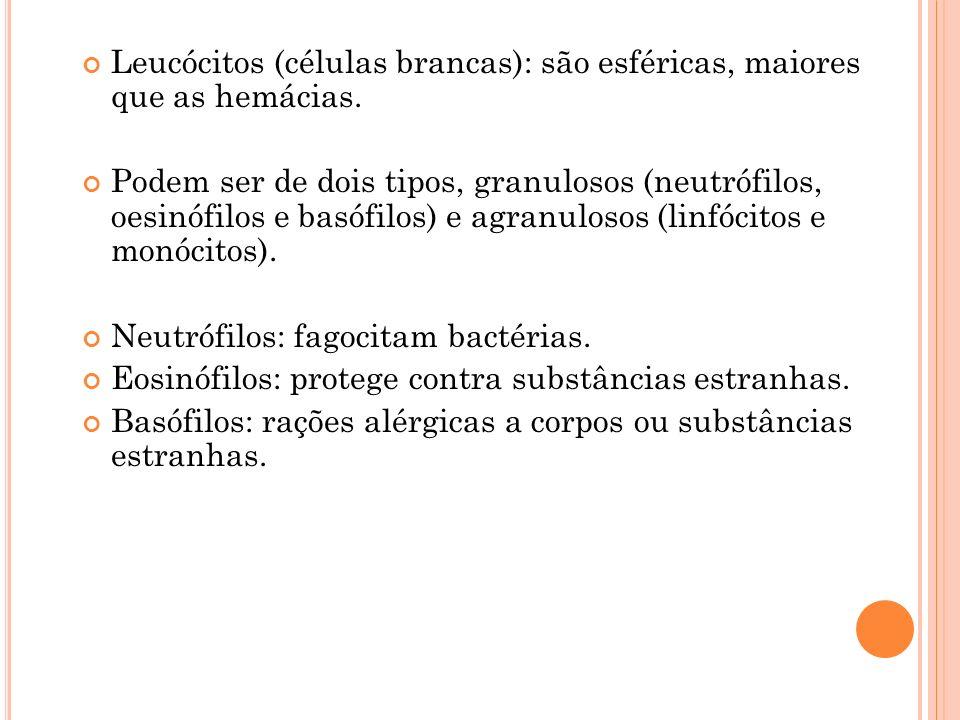 Leucócitos (células brancas): são esféricas, maiores que as hemácias. Podem ser de dois tipos, granulosos (neutrófilos, oesinófilos e basófilos) e agr