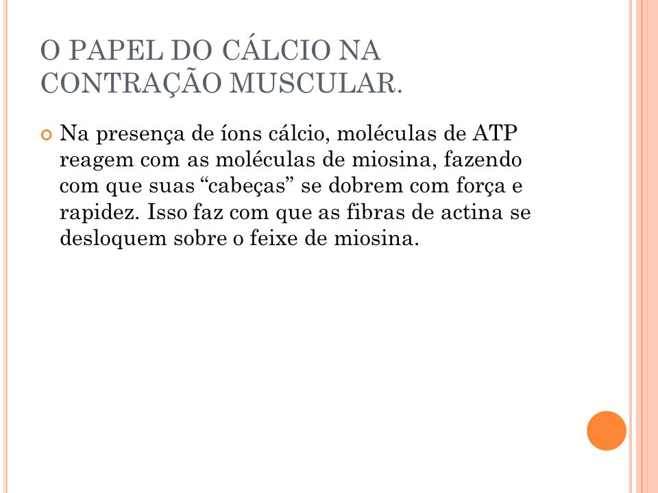O PAPEL DO CÁLCIO NA CONTRAÇÃO MUSCULAR. Na presença de íons cálcio, moléculas de ATP reagem com as moléculas de miosina, fazendo com que suas cabeças