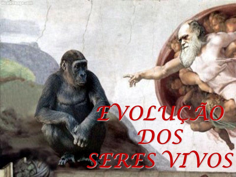 EVOLUÇÃODOS SERES VIVOS