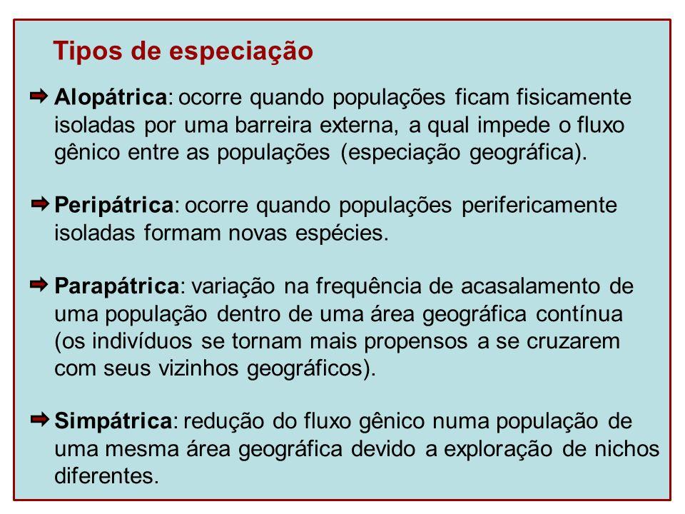 Tipos de especiação Alopátrica: ocorre quando populações ficam fisicamente isoladas por uma barreira externa, a qual impede o fluxo gênico entre as po