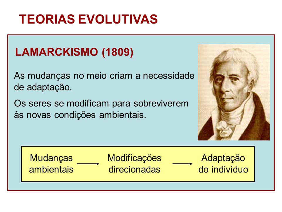 LAMARCKISMO (1809) TEORIAS EVOLUTIVAS As mudanças no meio criam a necessidade de adaptação. Mudanças ambientais Modificações direcionadas Adaptação do