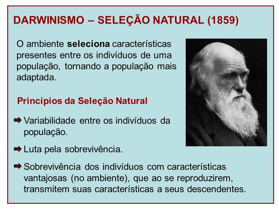 DARWINISMO – SELEÇÃO NATURAL (1859) O ambiente seleciona características presentes entre os indivíduos de uma população, tornando a população mais ada