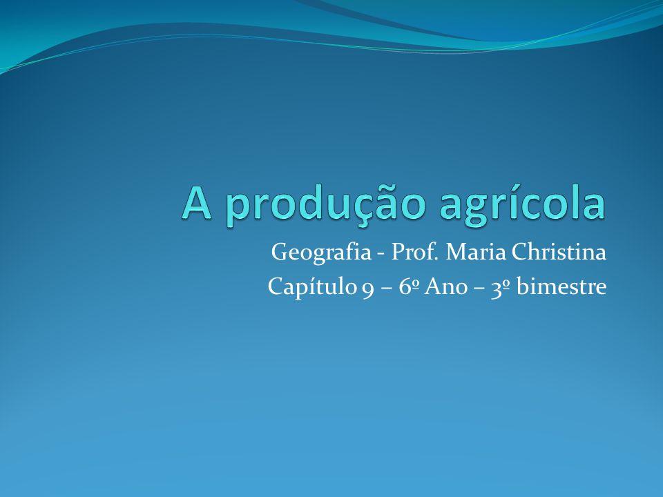 Cadeia agroindustrial do café O caminho que um produto agrícola percorre até chegar à nossa mesa é constituído por várias etapas de produção.