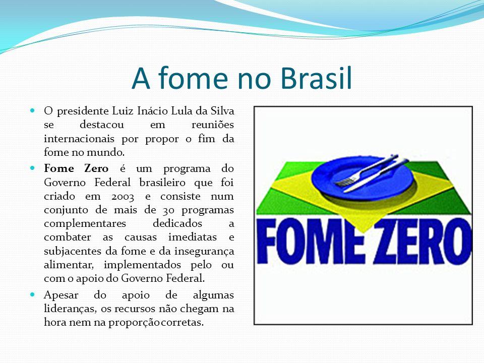 A fome no Brasil O presidente Luiz Inácio Lula da Silva se destacou em reuniões internacionais por propor o fim da fome no mundo. Fome Zero é um progr