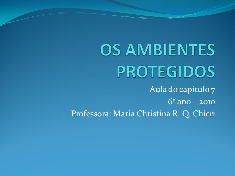 Aula do capítulo 7 6º ano – 2010 Professora: Maria Christina R. Q. Chicri