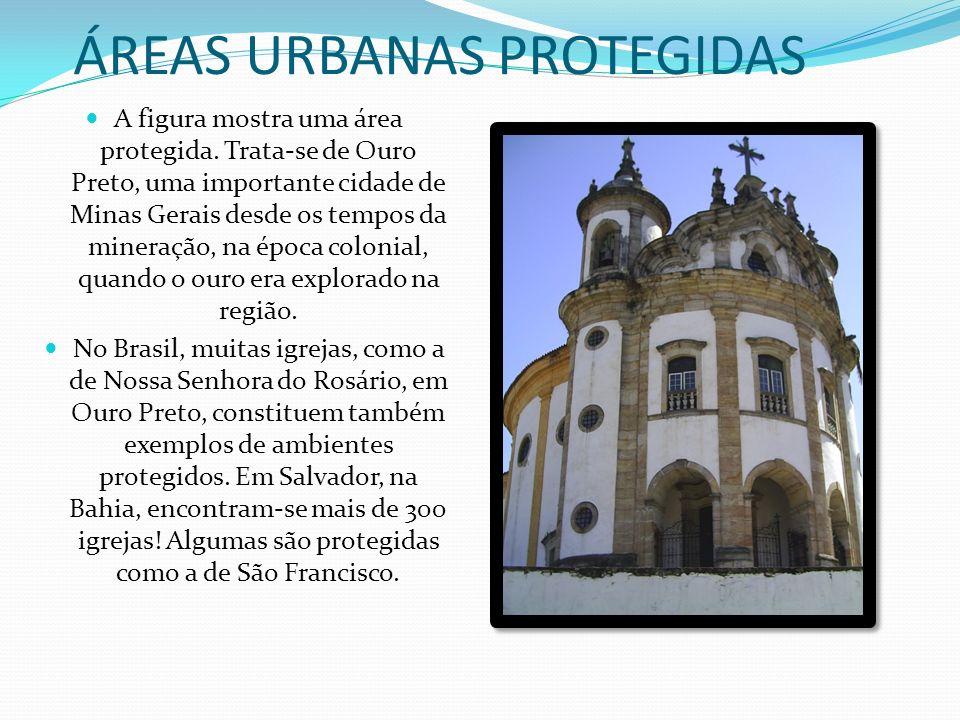 AMBIENTES URBANOS PROTEGIDOS NO BRASIL O Museu do Ipiranga, em São Paulo, é um exemplo interessante de ambiente protegido na cidade. Foi construído às