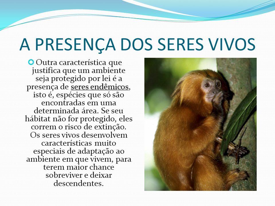 A PRESENÇA DOS SERES VIVOS seres endêmicos Outra característica que justifica que um ambiente seja protegido por lei é a presença de seres endêmicos, isto é, espécies que só são encontradas em uma determinada área.