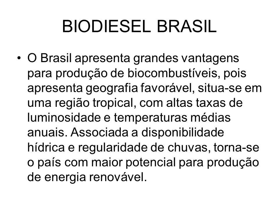 BIODIESEL BRASIL O Brasil apresenta grandes vantagens para produção de biocombustíveis, pois apresenta geografia favorável, situa-se em uma região tro