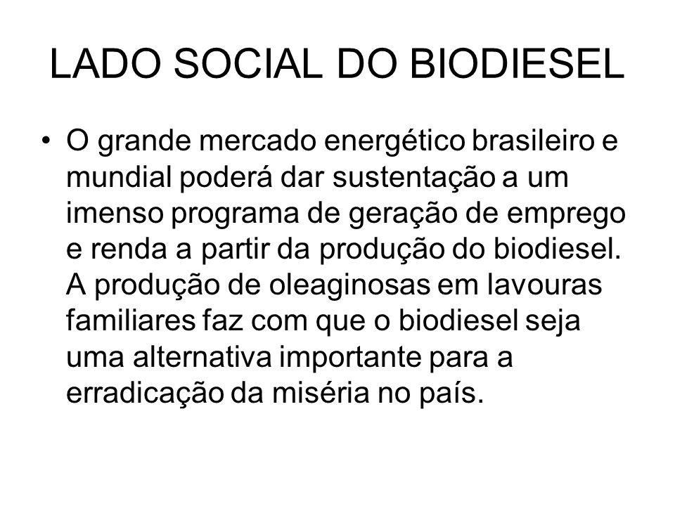 LADO SOCIAL DO BIODIESEL O grande mercado energético brasileiro e mundial poderá dar sustentação a um imenso programa de geração de emprego e renda a