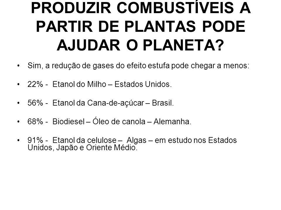BIBLIOGRAFIA Biocombustível.Disponível em http:/br.noticias.yahoo.com, acesso 12/04/2008.