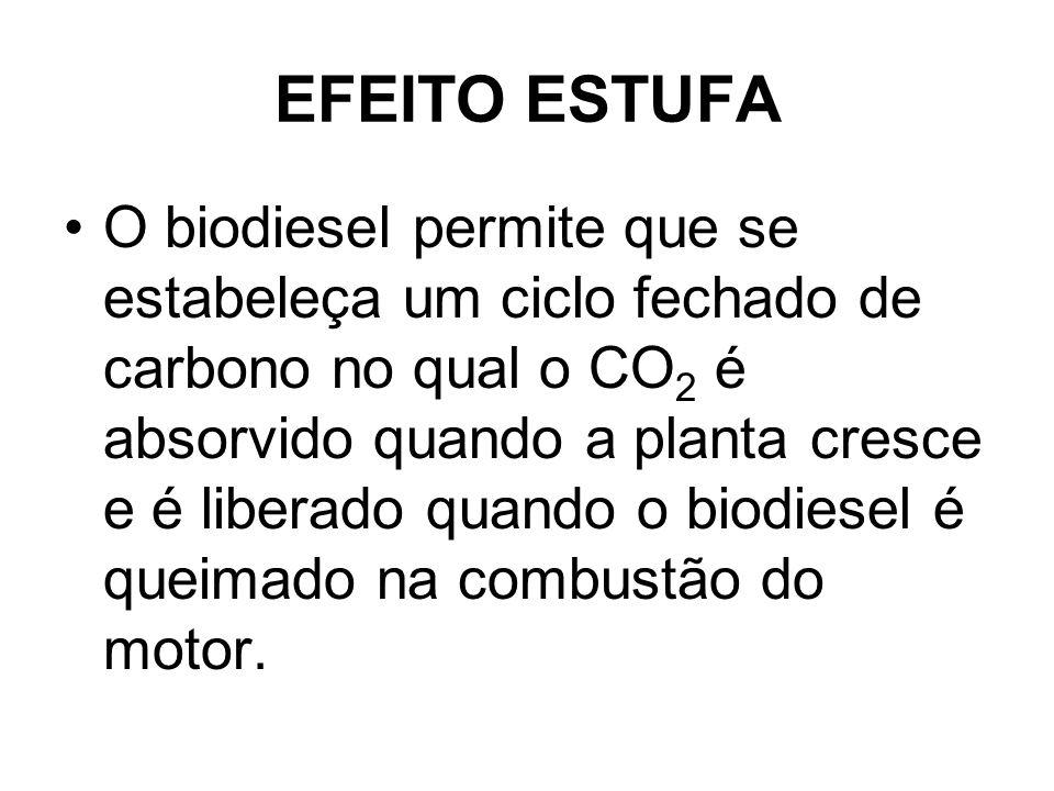 EFEITO ESTUFA O biodiesel permite que se estabeleça um ciclo fechado de carbono no qual o CO 2 é absorvido quando a planta cresce e é liberado quando