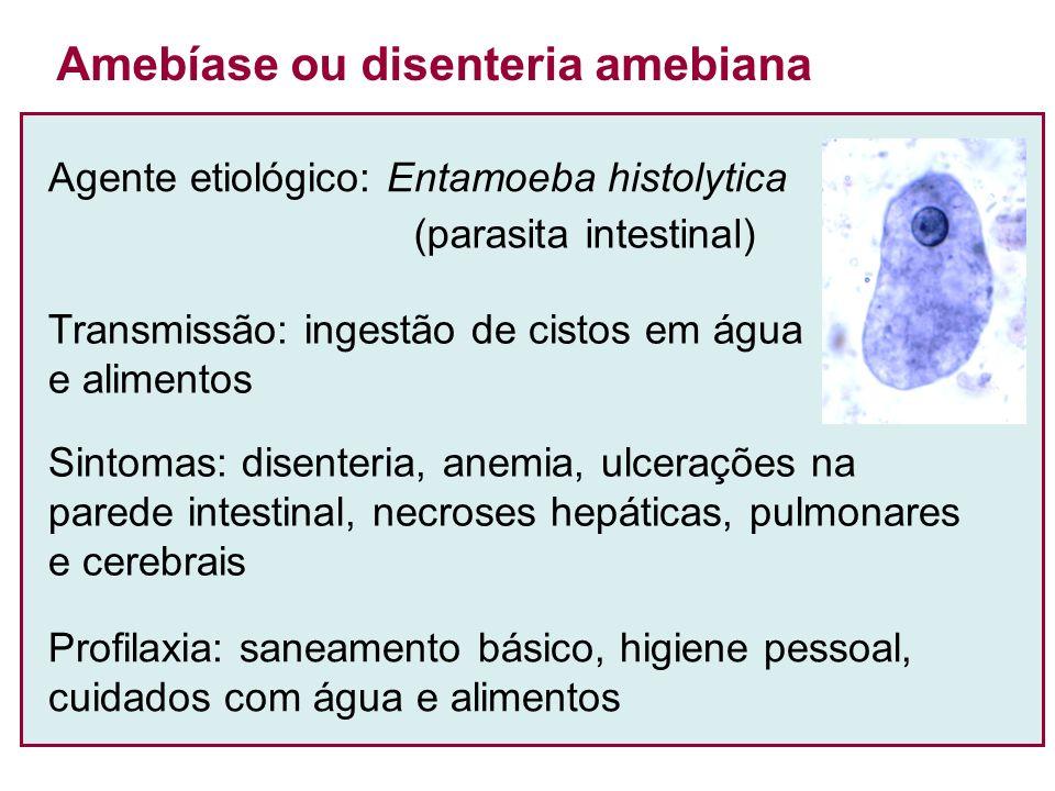 Agente etiológico: Entamoeba histolytica (parasita intestinal) Amebíase ou disenteria amebiana Transmissão: ingestão de cistos em água e alimentos Sin