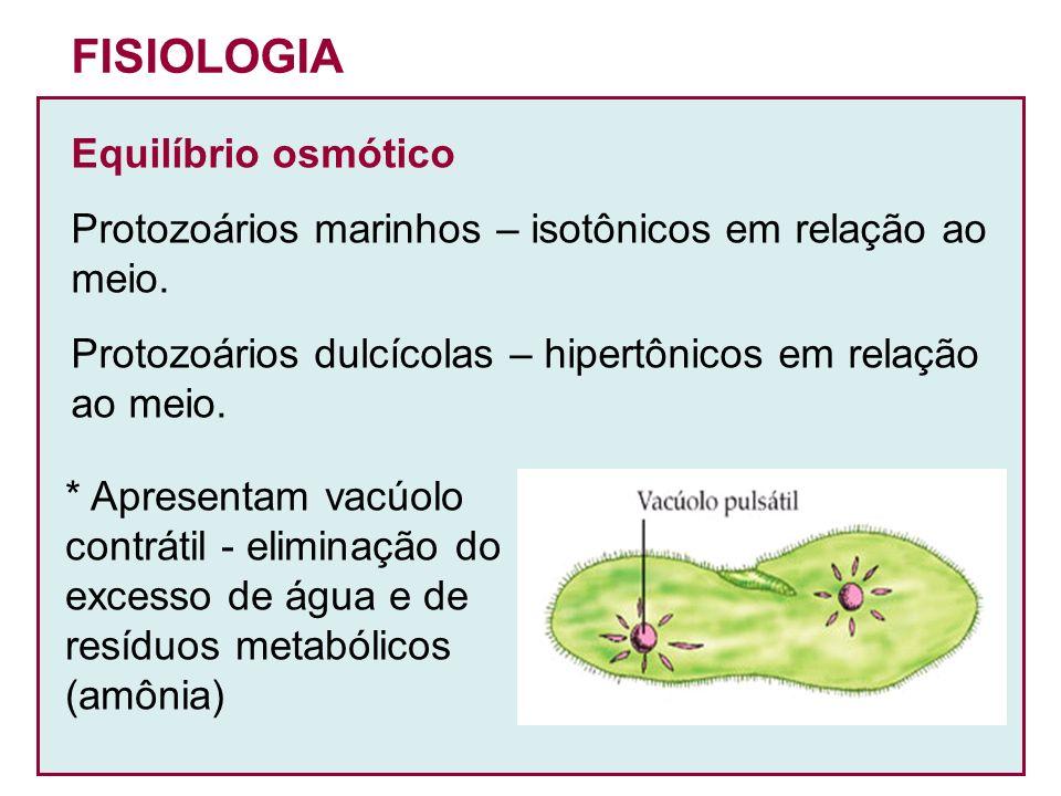 FISIOLOGIA Equilíbrio osmótico Protozoários marinhos – isotônicos em relação ao meio. Protozoários dulcícolas – hipertônicos em relação ao meio. * Apr