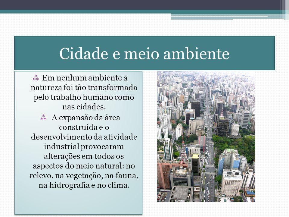 Cidade e meio ambiente Em nenhum ambiente a natureza foi tão transformada pelo trabalho humano como nas cidades. A expansão da área construída e o des