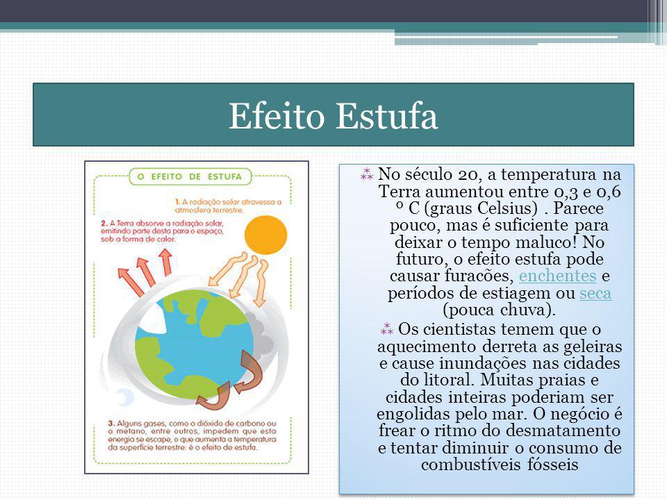 Efeito Estufa No século 20, a temperatura na Terra aumentou entre 0,3 e 0,6 º C (graus Celsius).