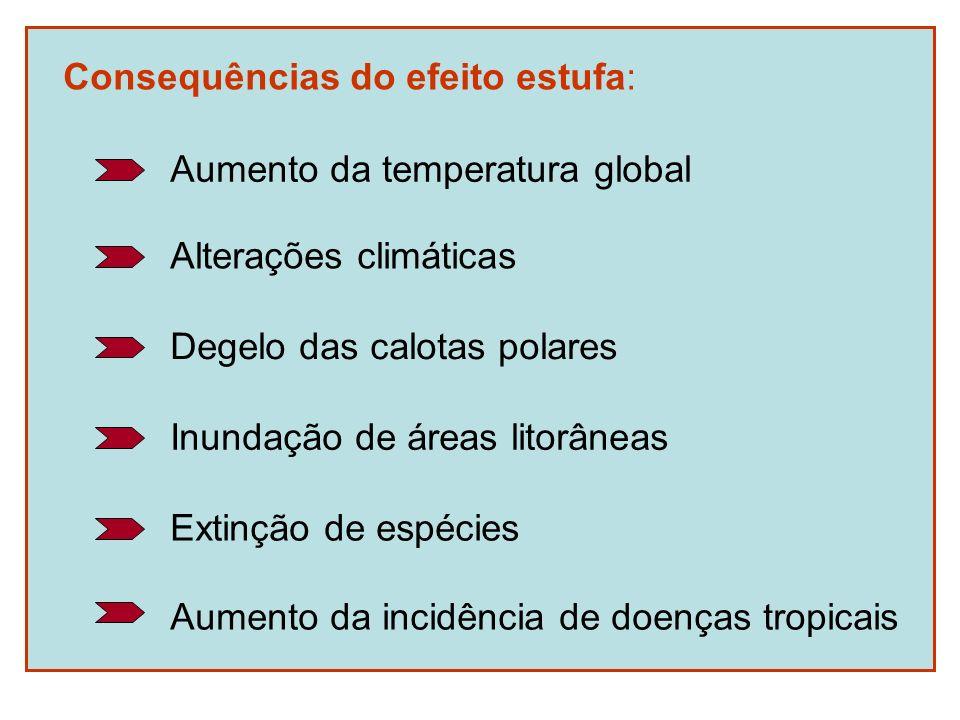 Consequências do efeito estufa: Aumento da temperatura global Alterações climáticas Degelo das calotas polares Inundação de áreas litorâneas Extinção
