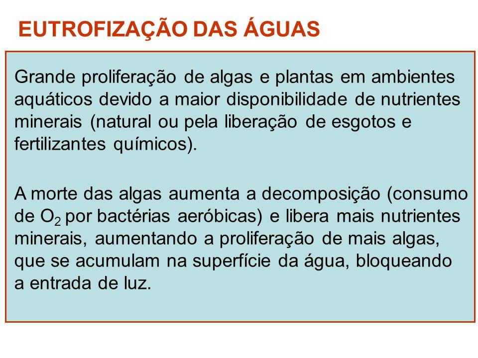 EUTROFIZAÇÃO DAS ÁGUAS Grande proliferação de algas e plantas em ambientes aquáticos devido a maior disponibilidade de nutrientes minerais (natural ou