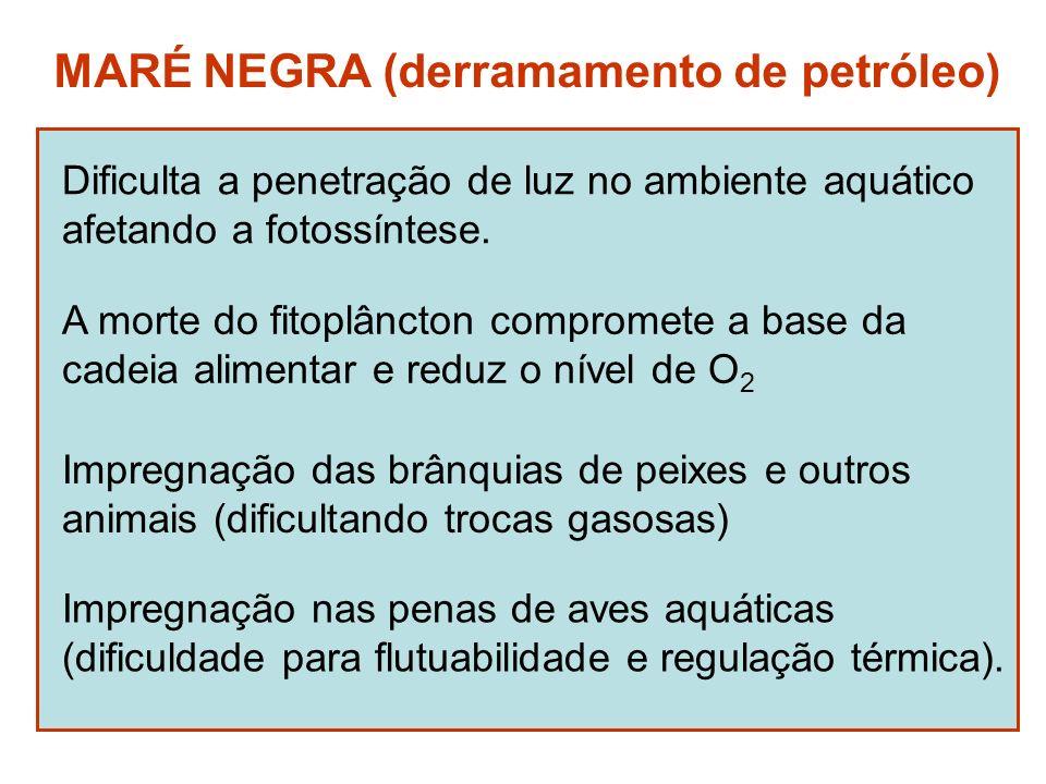 MARÉ NEGRA (derramamento de petróleo) Dificulta a penetração de luz no ambiente aquático afetando a fotossíntese. A morte do fitoplâncton compromete a