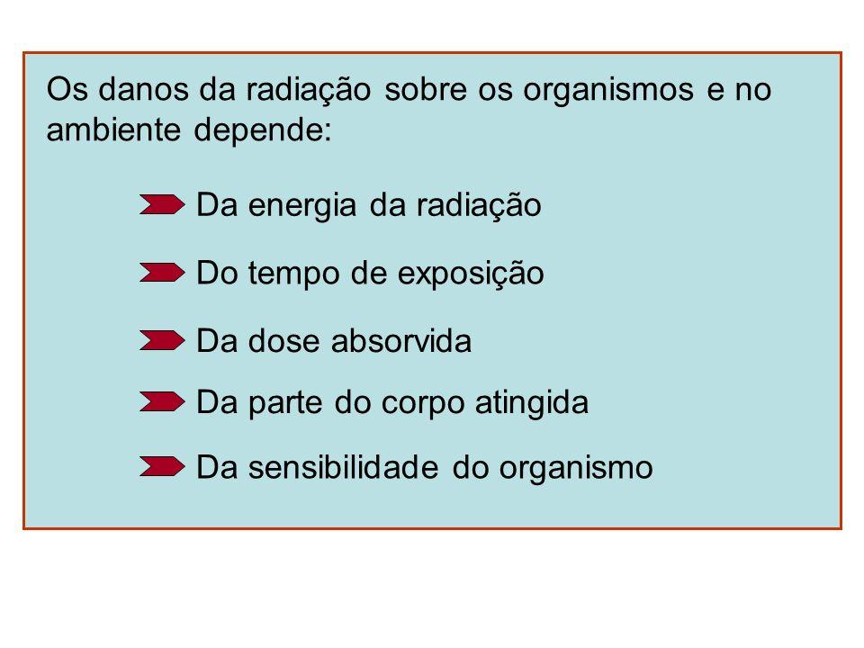 Os danos da radiação sobre os organismos e no ambiente depende: Da energia da radiação Do tempo de exposição Da dose absorvida Da parte do corpo ating