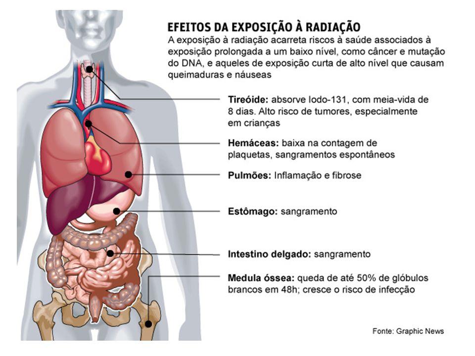 Ação do CFC O óxido de cloro reage com o oxigênio atômico formando oxigênio molecular e libera o átomo de cloro que pode reagir com outra molécula de ozônio.