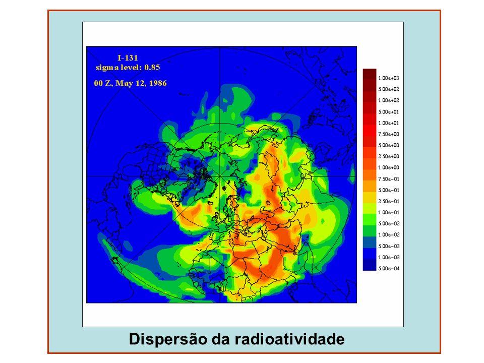 Efeitos da destruição da camada de ozônio Aumento das taxas de mutações (plantas e animais) Cegueira em insetos polinizadores Destruição do fitoplâncton Queimaduras na pele Aumento na incidência de câncer Fragilização do sistema imunológico Alteração da distribuição térmica e circulação de ar