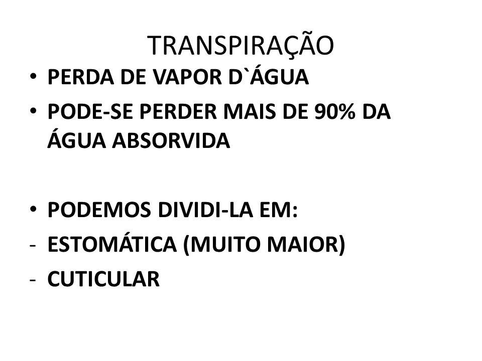 TRANSPIRAÇÃO PERDA DE VAPOR D`ÁGUA PODE-SE PERDER MAIS DE 90% DA ÁGUA ABSORVIDA PODEMOS DIVIDI-LA EM: -ESTOMÁTICA (MUITO MAIOR) -CUTICULAR
