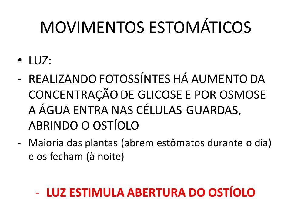 LUZ: -REALIZANDO FOTOSSÍNTES HÁ AUMENTO DA CONCENTRAÇÃO DE GLICOSE E POR OSMOSE A ÁGUA ENTRA NAS CÉLULAS-GUARDAS, ABRINDO O OSTÍOLO -Maioria das plantas (abrem estômatos durante o dia) e os fecham (à noite) -LUZ ESTIMULA ABERTURA DO OSTÍOLO
