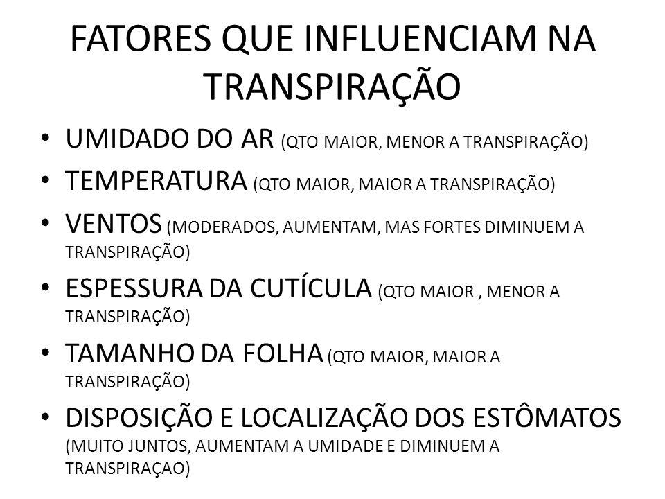 FATORES QUE INFLUENCIAM NA TRANSPIRAÇÃO UMIDADO DO AR (QTO MAIOR, MENOR A TRANSPIRAÇÃO) TEMPERATURA (QTO MAIOR, MAIOR A TRANSPIRAÇÃO) VENTOS (MODERADOS, AUMENTAM, MAS FORTES DIMINUEM A TRANSPIRAÇÃO) ESPESSURA DA CUTÍCULA (QTO MAIOR, MENOR A TRANSPIRAÇÃO) TAMANHO DA FOLHA (QTO MAIOR, MAIOR A TRANSPIRAÇÃO) DISPOSIÇÃO E LOCALIZAÇÃO DOS ESTÔMATOS (MUITO JUNTOS, AUMENTAM A UMIDADE E DIMINUEM A TRANSPIRAÇAO)