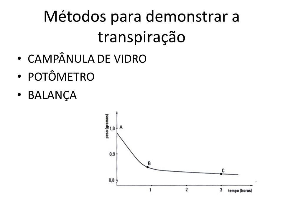 Métodos para demonstrar a transpiração CAMPÂNULA DE VIDRO POTÔMETRO BALANÇA