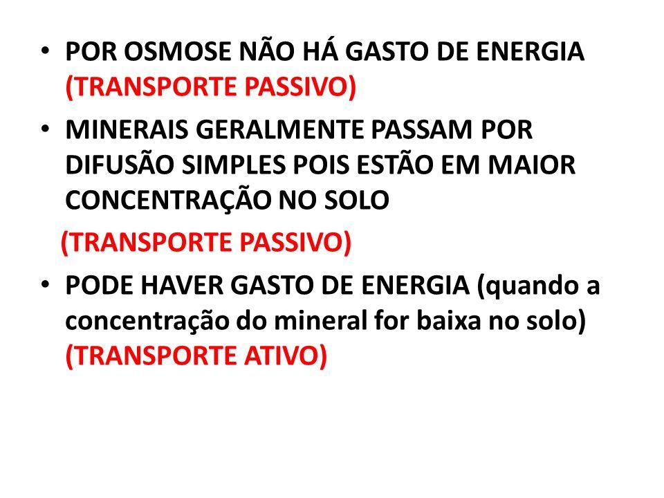 POR OSMOSE NÃO HÁ GASTO DE ENERGIA (TRANSPORTE PASSIVO) MINERAIS GERALMENTE PASSAM POR DIFUSÃO SIMPLES POIS ESTÃO EM MAIOR CONCENTRAÇÃO NO SOLO (TRANSPORTE PASSIVO) PODE HAVER GASTO DE ENERGIA (quando a concentração do mineral for baixa no solo) (TRANSPORTE ATIVO)