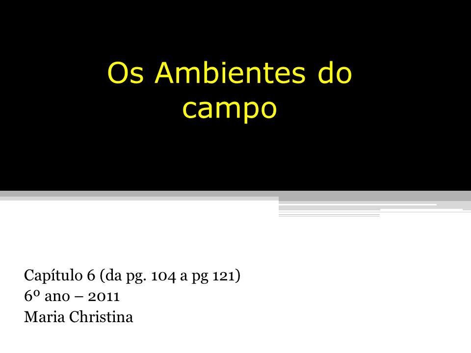 Os Ambientes do campo Capítulo 6 (da pg. 104 a pg 121) 6º ano – 2011 Maria Christina