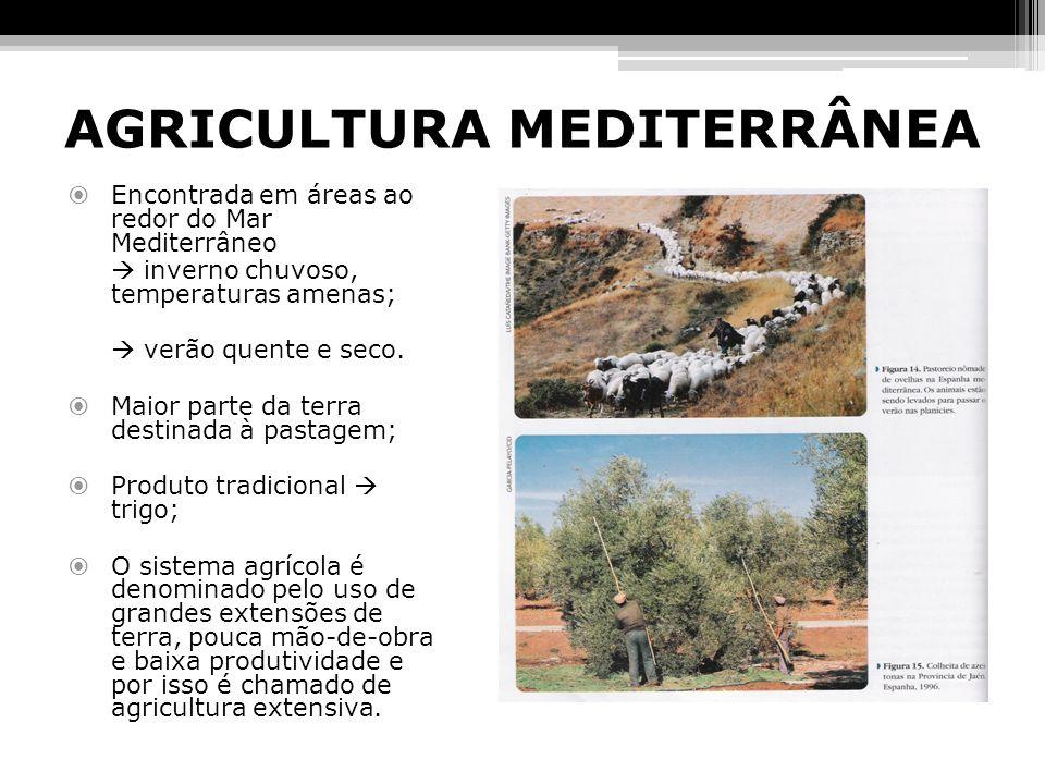 AGRICULTURA MEDITERRÂNEA Encontrada em áreas ao redor do Mar Mediterrâneo inverno chuvoso, temperaturas amenas; verão quente e seco. Maior parte da te